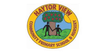 Haytor View